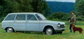 1966 Peugeot 204 Break Grand Luxe