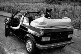 Volkswagen Golf Cabrio Soft Top